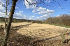 Bepflanzung Schneeball und Eschenweg