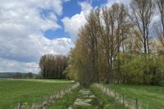 2021_Ley-Niederrhein-3